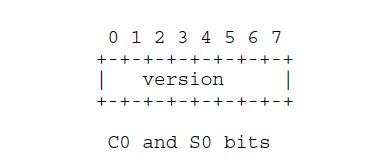 C0_S0_bits